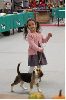 beagle1210